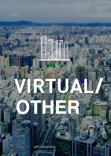 Virtual / Other